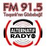 Alternatif-Radyo