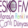 Radyo Esko